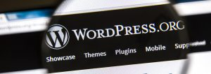 wordpress ledende